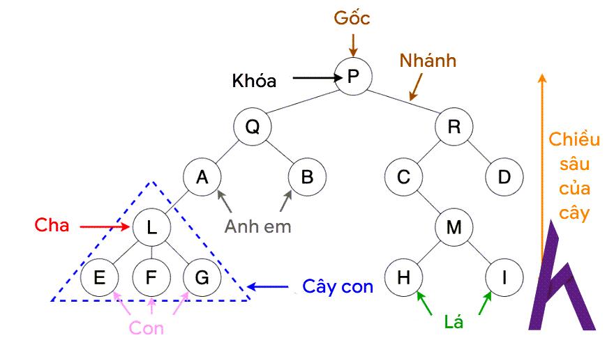 Minh họa cấu trúc binary tree